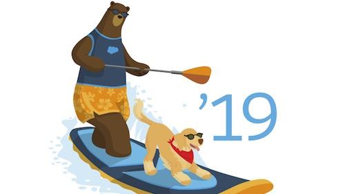 Summer 19 Release logo