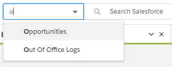 Salesforce Search Options